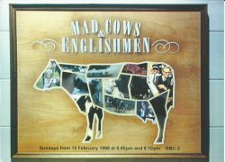 image for Mad Cows and Englishmen
